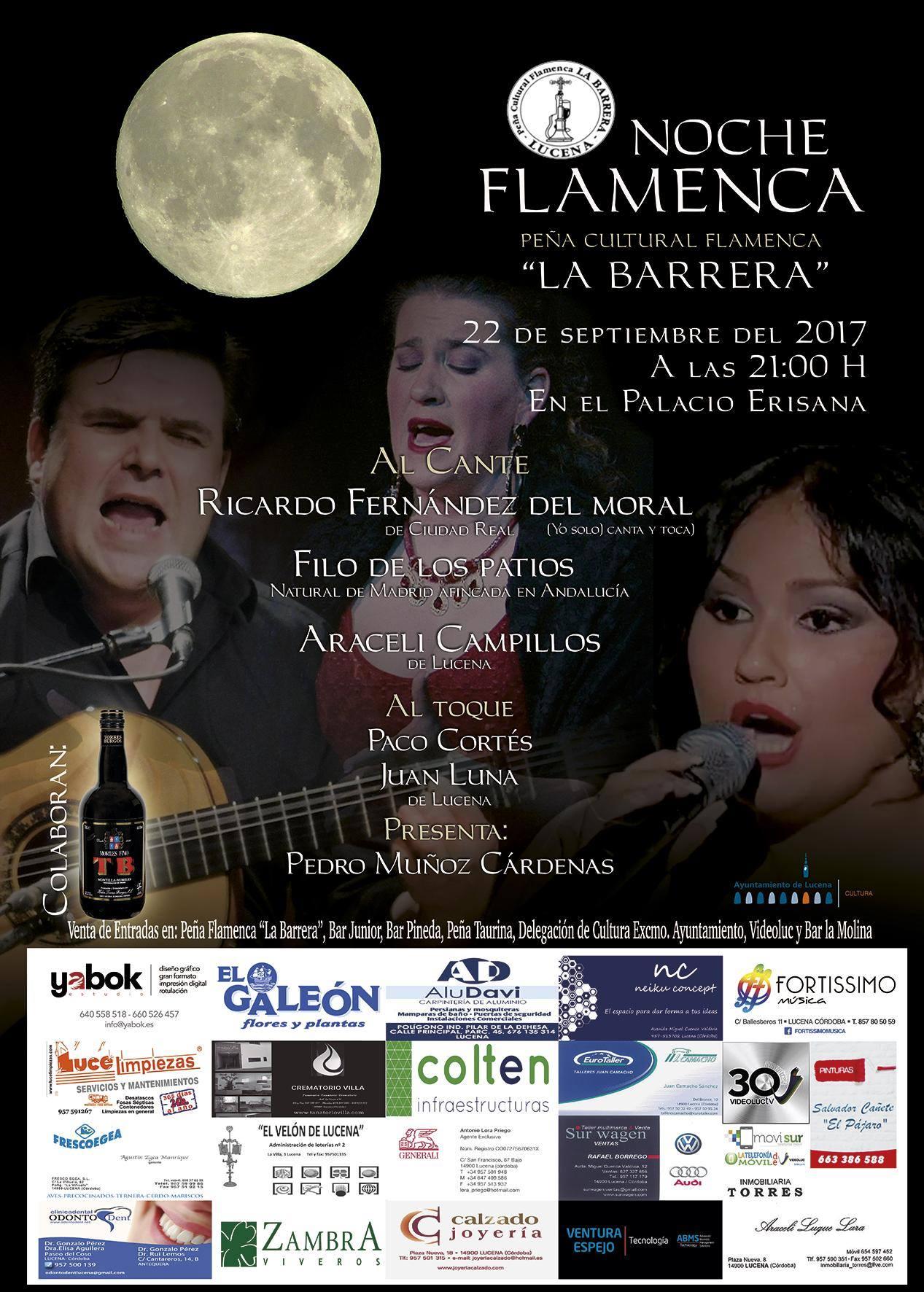 Noche Flamenca @ Palacio Erisana